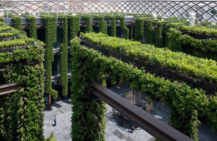 Намосковских крышах зацветут сады