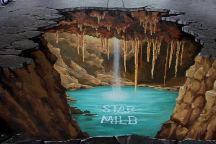 ВБабушкинском парке наасфальте нарисуют 3D-картины
