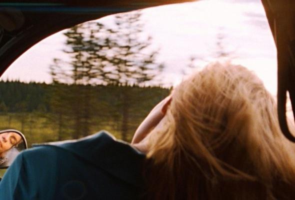 Окно в лето - Фото №6
