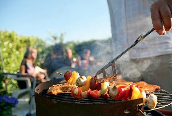 Еда для пикника: лучшие ресторанные предложения - Фото №0