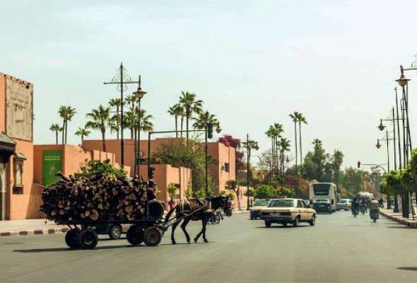 Марокко: Марракеш - Фото №1