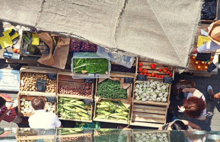 Фестиваль молодых овощей