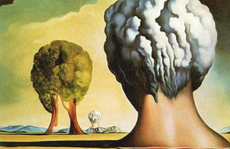 Мозг и наркотики