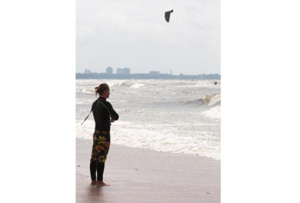 Водные птицы - Фото №2