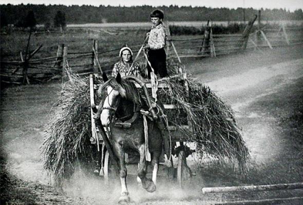 Современная фотография из коллекции РОСФОТО - Фото №2