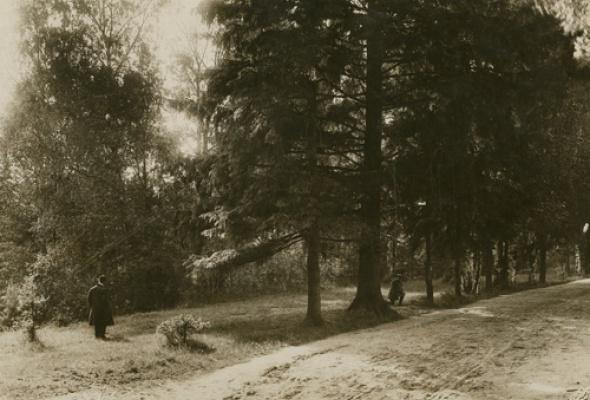 Фотографии XIX в. из коллекции РОСФОТО - Фото №5