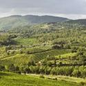 Тоскана: родина Возрождения