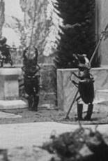 Война усачей и рогачей