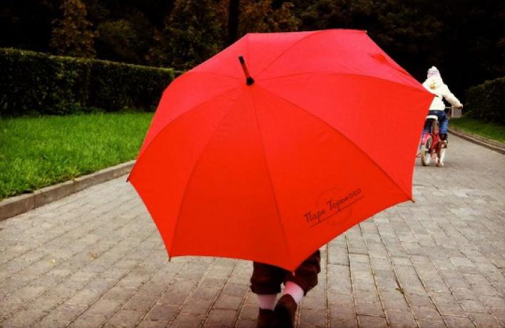 ВПарке Горького появился бесплатный прокат зонтов