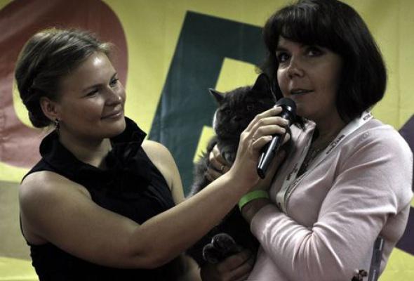 """Международная выставка кошек """"Котовасия"""" - Фото №0"""