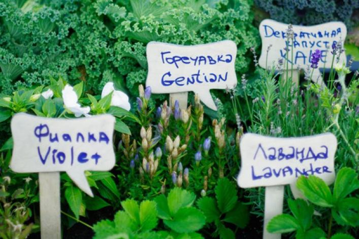 Праздник урожая LavkaLavka