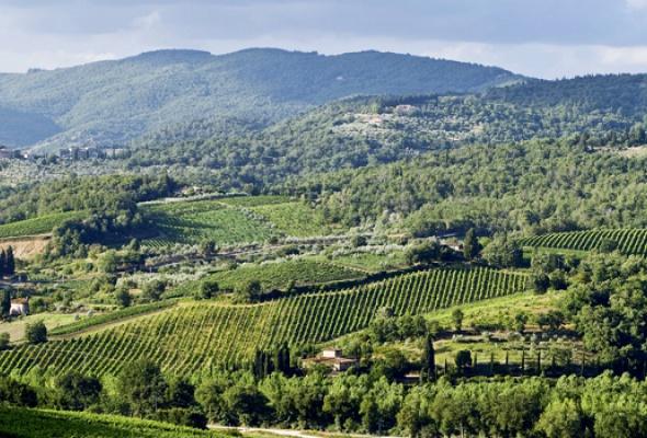 Тоскана: родина Возрождения - Фото №0