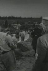 Болотные солдаты