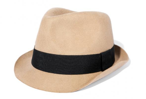 15модных шляпок - Фото №11