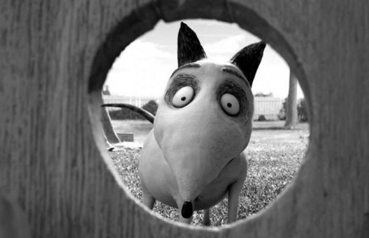 На«Пес-пати» покажут новый мультфильм Тима Бертона