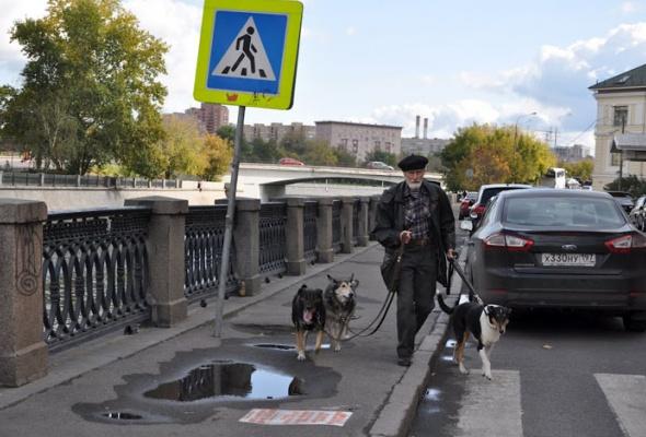 Прогулки соStarbucks: 29сентября - Фото №13