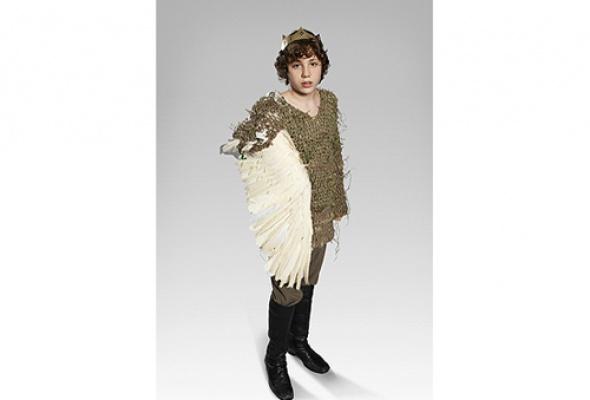 Ганс Христиан Андерсен. Дикие лебеди. Декупажи Её Величества Королевы Дании Маргрете II - Фото №0
