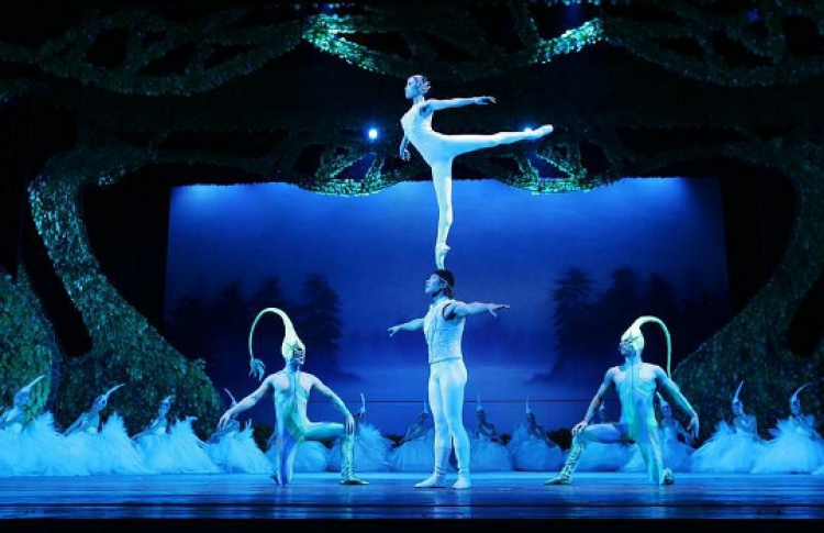 Шоу «Лебединое озеро»