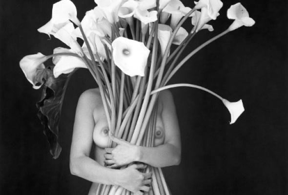 Флор Гардуньо «Сны и метафоры» - Фото №0