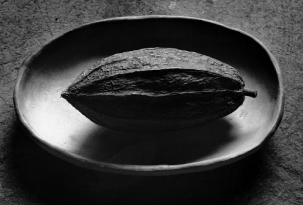 Флор Гардуньо «Сны и метафоры» - Фото №1