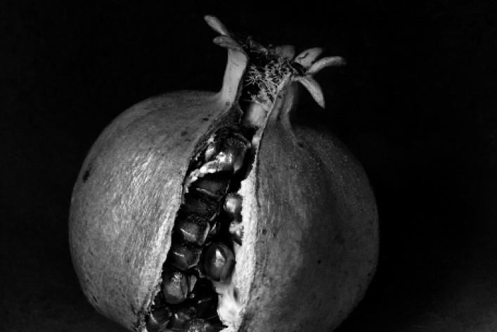 Флор Гардуньо «Сны и метафоры»