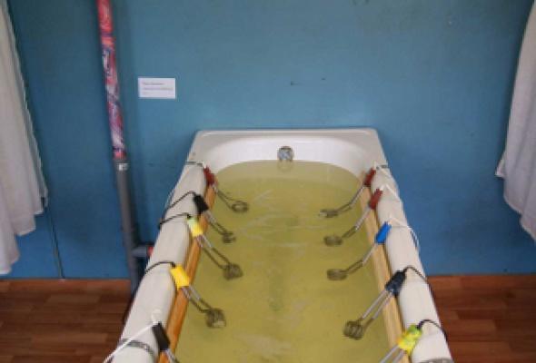 Одиночное плавание - Фото №3
