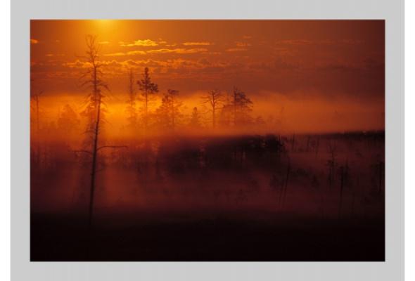 Антон Ланге Путешествия. Greatest Hits. 2006-2009 - Фото №0