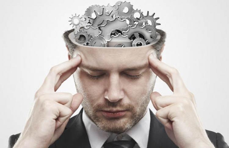 Мозг и память