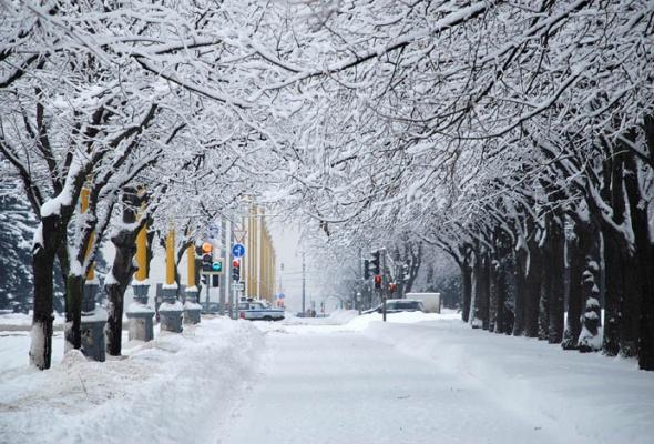 30причин любить зиму - Фото №8