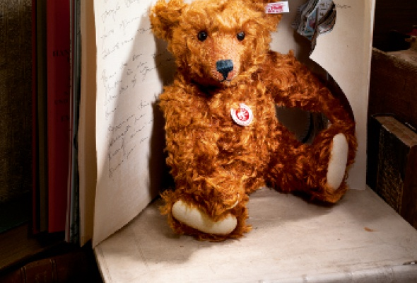 Hello, Teddy - Фото №1