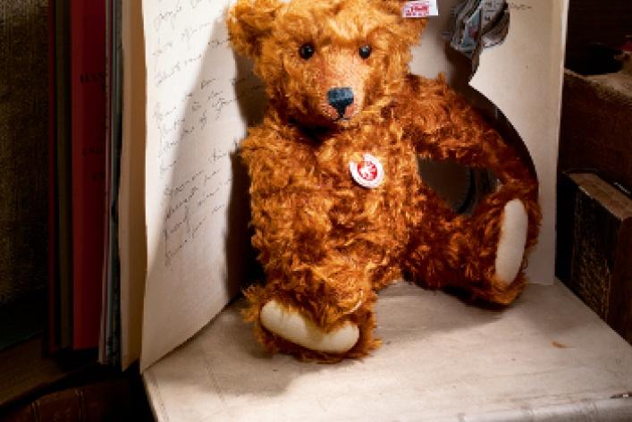 Hello, Teddy