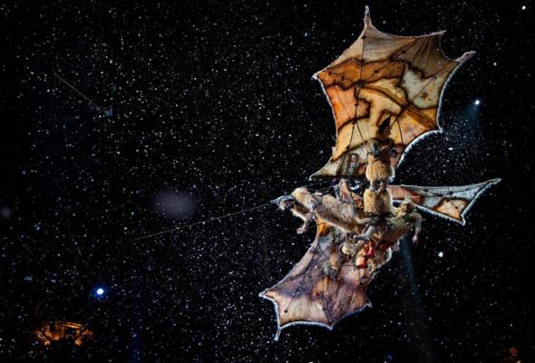 Cirque du Soleil: Сказочный мир в 3D - Фото №0