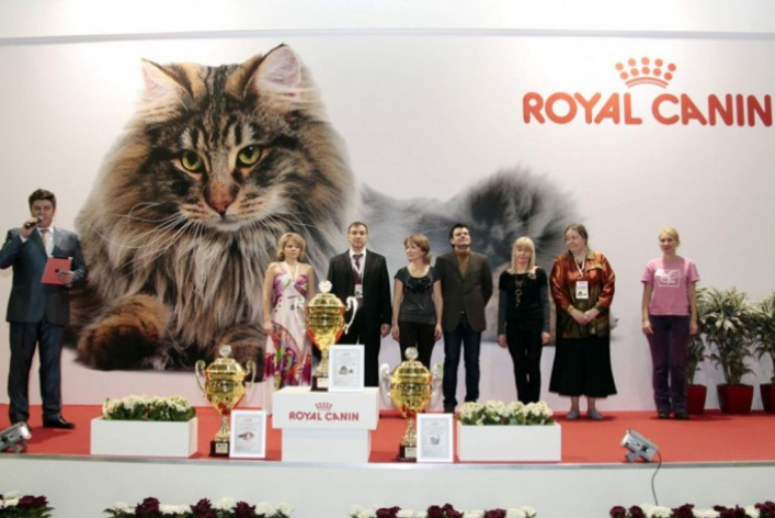 Гран-при Royal Canin