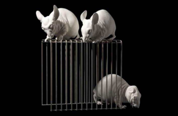 Объявлены лауреаты Премии Кандинского 2012 года