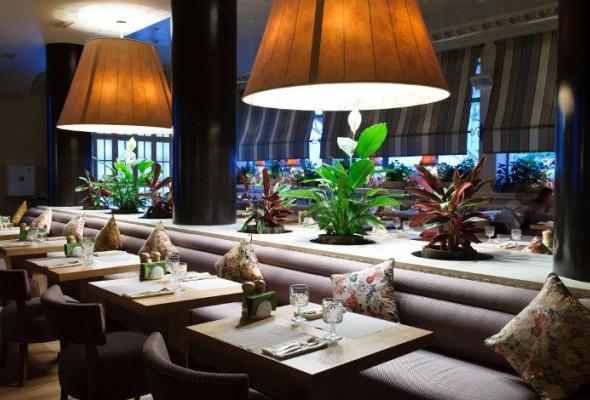 «Нам было уютно вэтом пустом симпатичном ресторане» - Фото №1