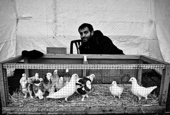 """Серкант Хекимджи """"Стамбул"""" - Фото №3"""