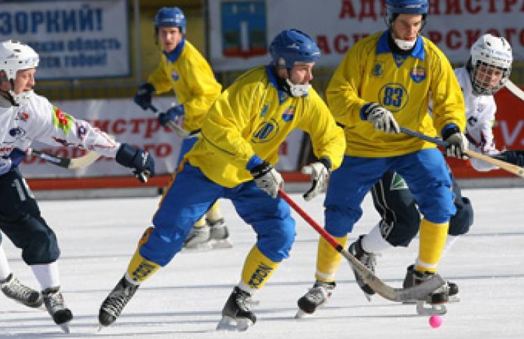 Чемпионат России по хоккею с мячом 2007-2008