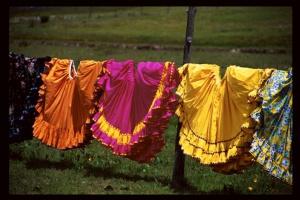 Долорес Дальхаус «Мексика: цвета и истоки»