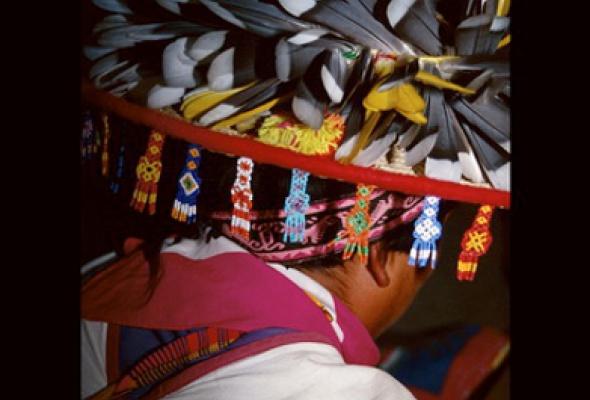 Долорес Дальхаус «Мексика: цвета и истоки» - Фото №0