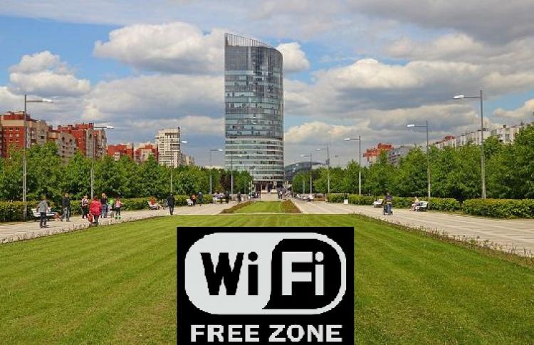 ВПарке 300-летия заработал бесплатный WiFi