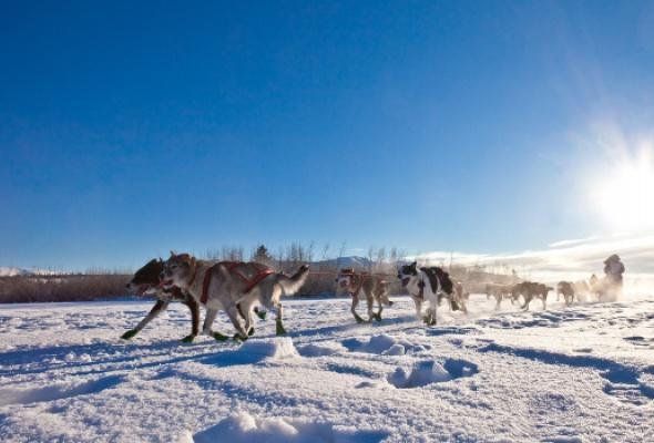 Снежная Лапландия - Фото №0