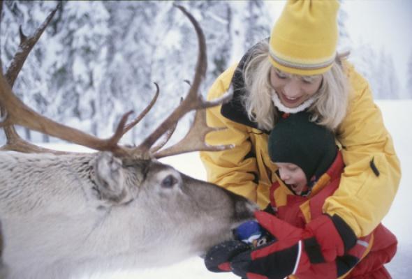 Снежная Лапландия - Фото №3