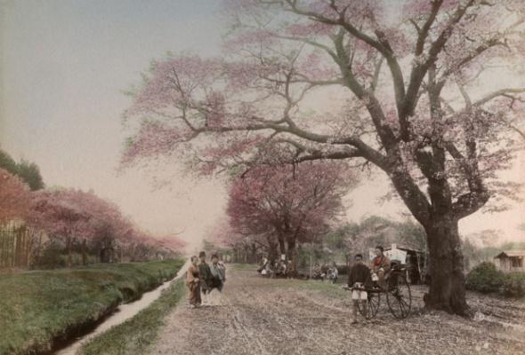 100 лет Токио - Фото №1