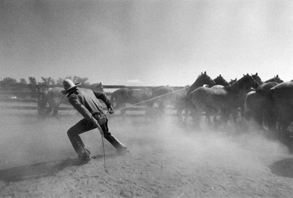 Мартин Шрайбер «Ковбои и обнаженные» - Фото №6