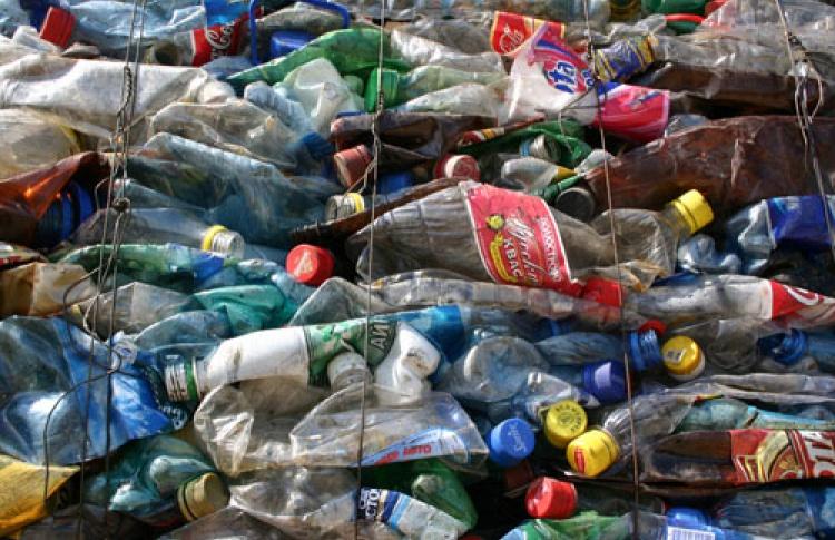 """""""Экологическая культура"""": """"Мусорная революция: как решить проблему отходов"""""""