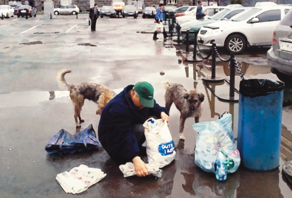Собачья жизнь - Фото №1