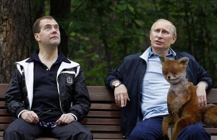 Депутат Милонов против Упоротого Лиса
