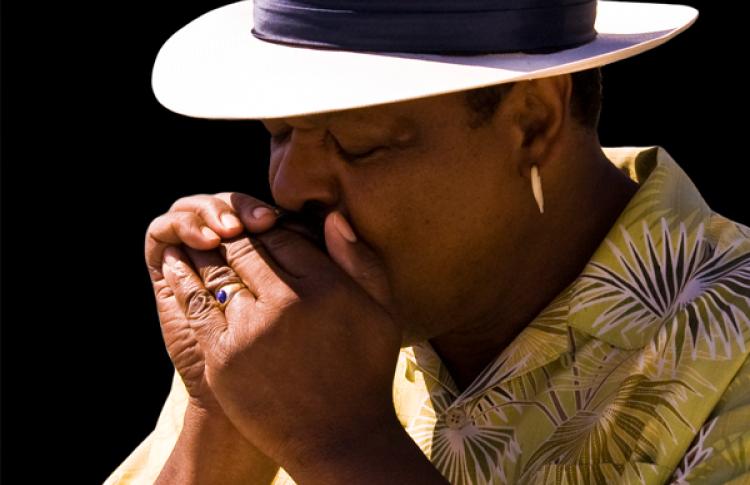 II Фестиваль традиционной американской музыки: Modern Blues Masters