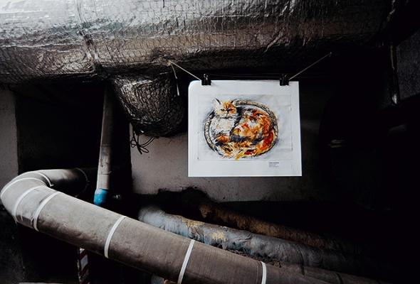 День эрмитажного кота - Фото №10