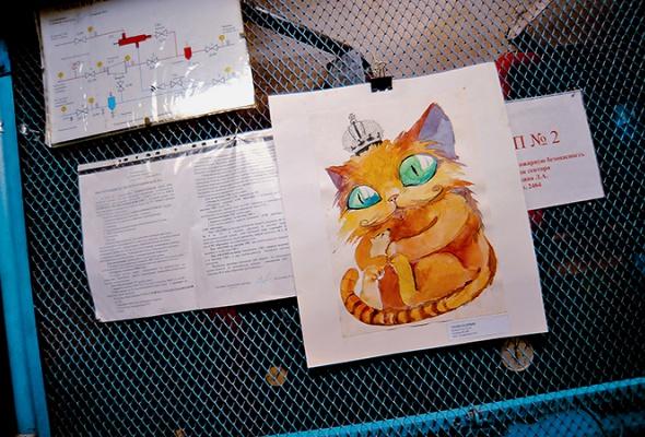 День эрмитажного кота - Фото №15